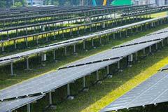 メガソーラー・太陽光発電施設の草刈り・除草