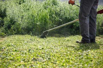 管理地の草刈り
