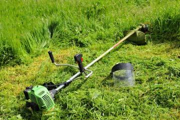 お庭の除草