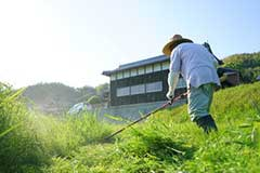 別荘・会社の敷地、管理地等の定期的な草刈り