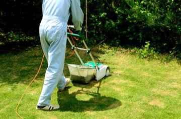 芝生の刈り込み、芝刈り作業