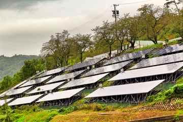 定期太陽光発電施設草刈り